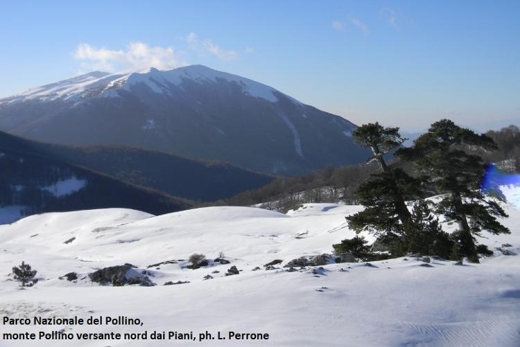 13 monte Pollino versante nord dai Piani-rid.jpg